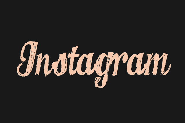 Instagram Bio Ideas for more follower
